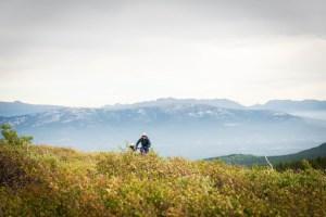 North America; Canada; Yukon Territory; Yukon; Mt. McIntyre; Mountain Biking Trail; Mountain Biking; Landscape; Nature; Alpine; Nikon D800