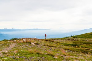North America; Canada; Yukon Territory; Yukon; Mt. McIntyre; Hiking Trail; Hike; Landscape; Nature; Alpine; Nikon D800