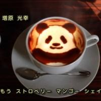 Polar Bear Café and Coffee Culture
