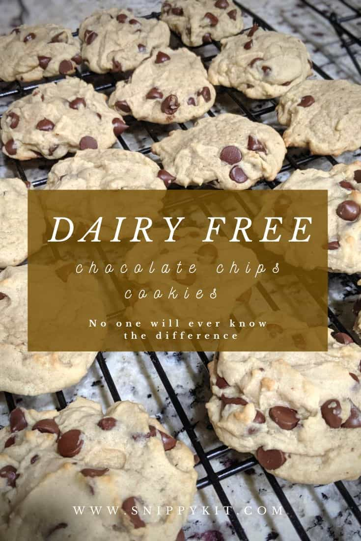 Dairy free cookies shouldn't taste different just because they are dairy free. This is a simple, chewy chocolate chip cookie recipe that will have everyone coming back for more. No one will even know it is dairy free.