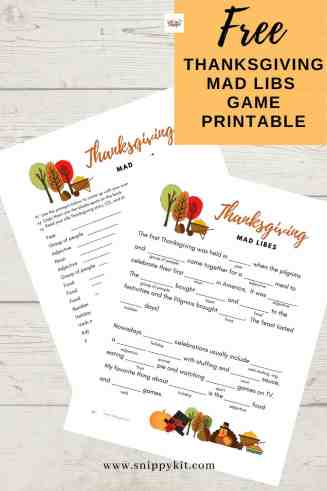 This silly Thanksgiving Mad Libs Printable is perfect for keeping the kids entertained and occupied while the turkey finishes cooking!