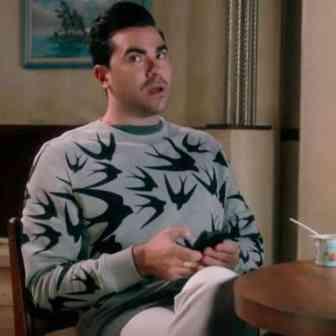 david rose swallows sweater