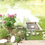 谷戸池の四季折々