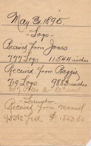 JonesRaggioManuelLogCount1895