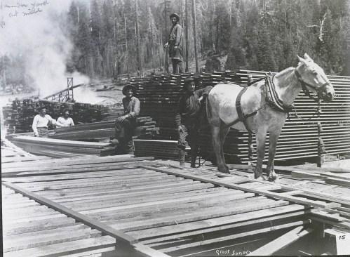 lumberydmill1