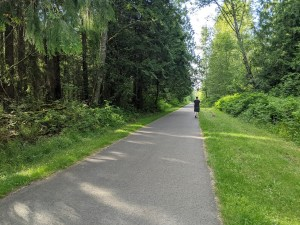 Snohomish County Centennial Trail