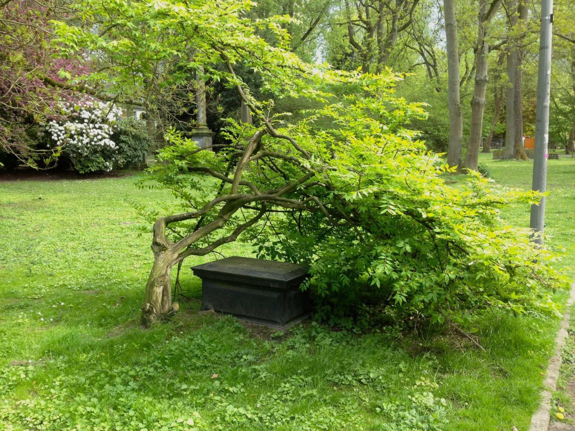 Gräber im Dortmunder Westpark