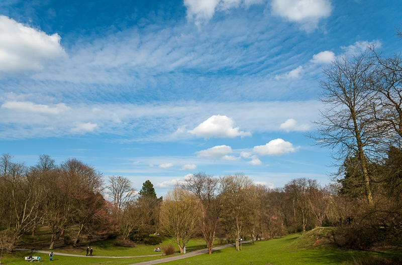 Natur genießen im Rombergpark