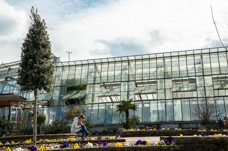 An den Pflanzenschauhäuser