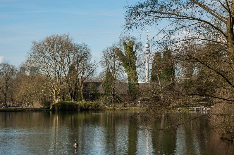 See im Rombergpark mit Blick auf den Florian