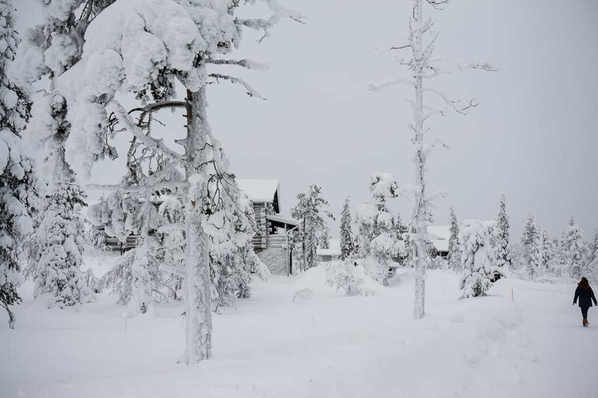 Winterlandschaft in Lappland