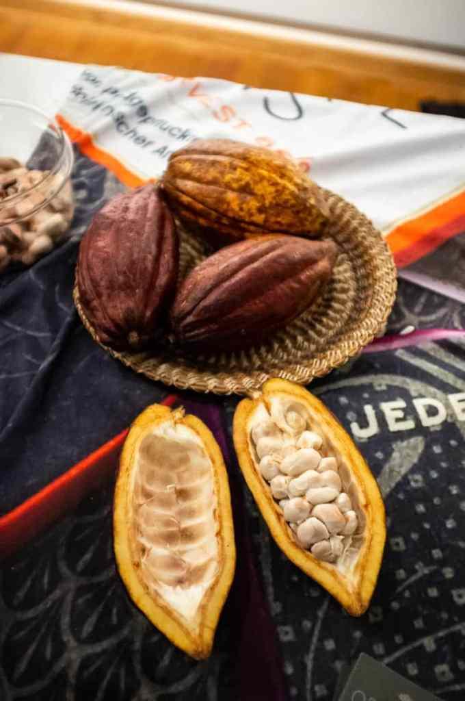 Kakaobohnen - die Frucht, aus dem die Träume sind