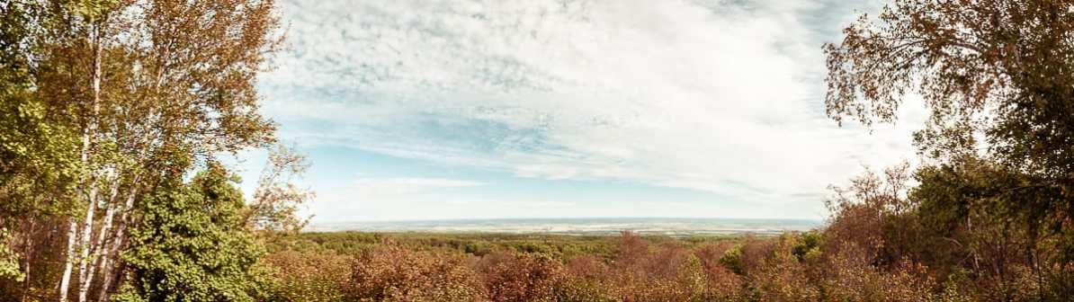 Ausblick auf die weite Natur des Riding Mountain National Parks