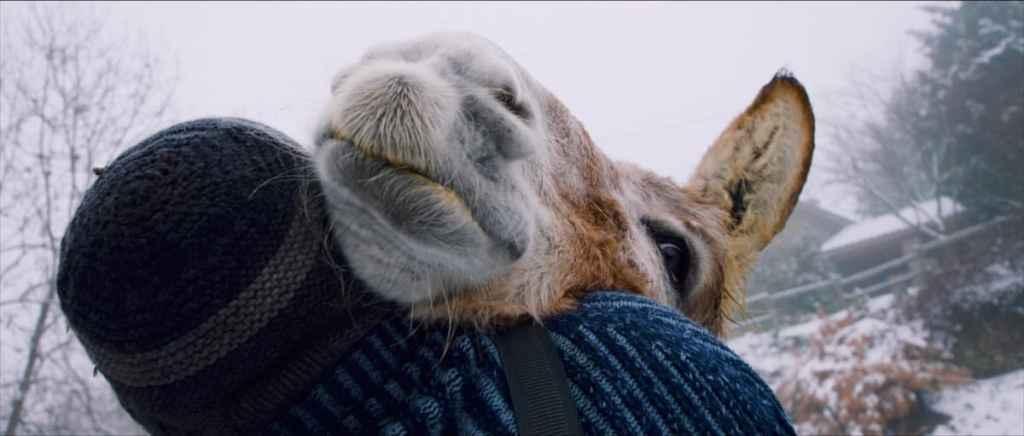 Jacques Schneider umarmt seinen Esel. Man sieht Jacques nur von hinten, seine Jacke und Mütze, der Esel schaut ihm über die rechte Schulter wie bei einer Umarmung. Im Hintergrund ist die schneebedeckte Landschaft und sein Haus zu sehen.