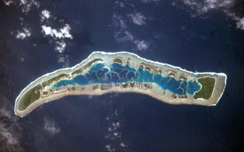 Millennium coral reef
