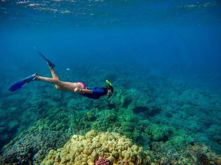 snorkeling maui beaches