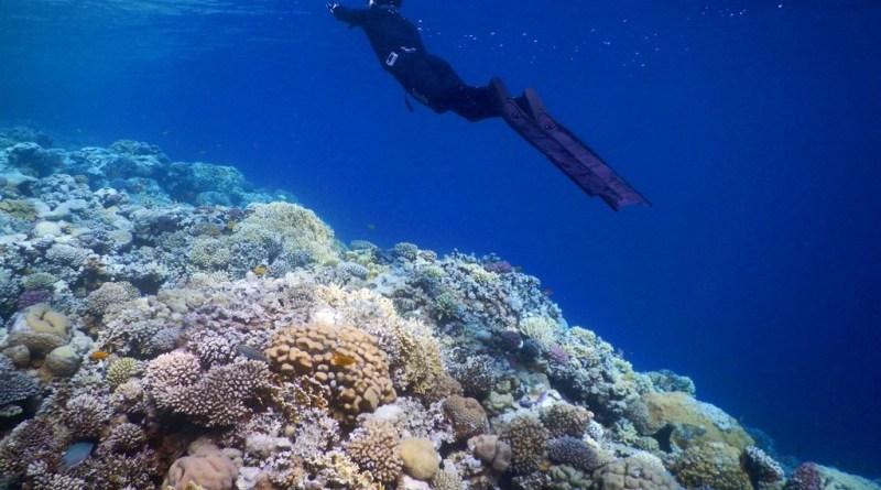 Blue Hole Egypt - World's most dangerous dive site
