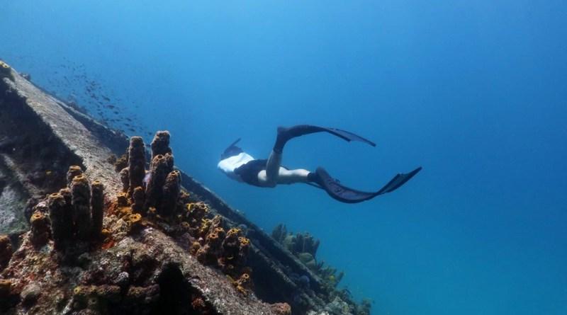 Aruba shipwreck snorkeling