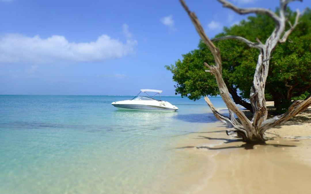 Nature Surprises Everyday in Tobago