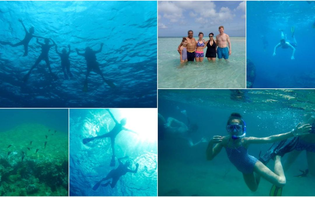 Awesome Family Snorkelling on ZOE