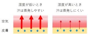 湿度が低い時汗は蒸発しにくく、湿度が高い時汗は蒸発しやすいことを示すイメージ