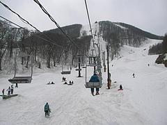 04-12ネコマ 通常営業終了~ 春パークは健在