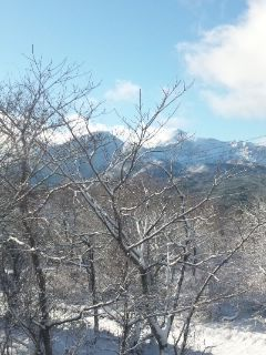 グランデコ&猫魔積雪2