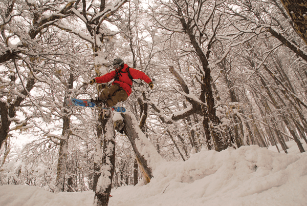 Tomas Blanc is a local legend, got to be quick to spot him in the trees © Catedral Alta Patagonia