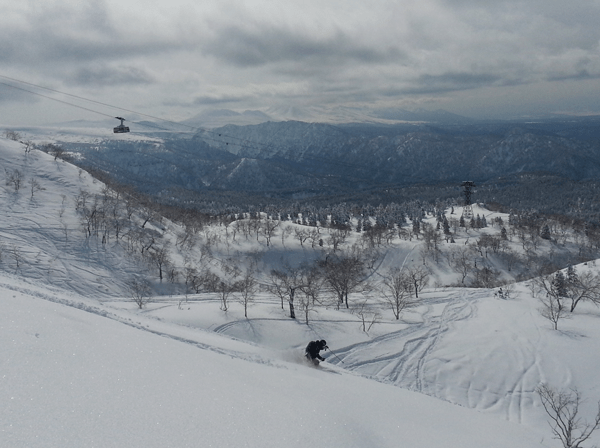 Powder lines at Asahidake