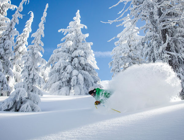 In good seasons Mt Bachelor gets Japanese style quantities of pow © Mt Bachelor