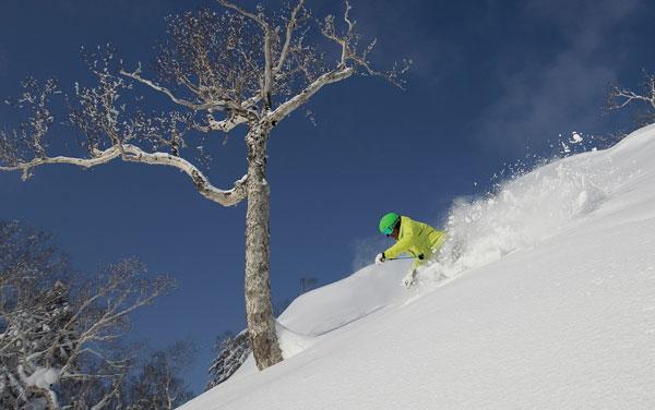 Sunny skiing Furano