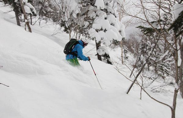 skiing powder at Kokusai