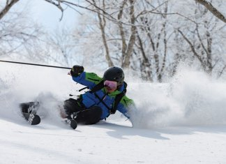 Japanese ski guides