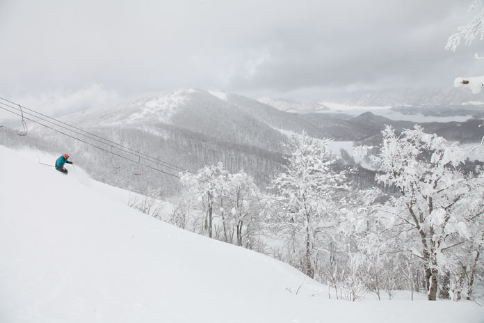 powder skiing Nekoma