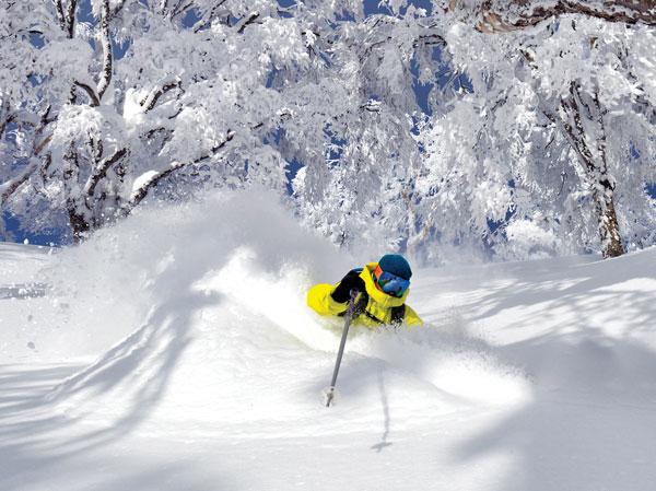 Deep snow Nozawa Onsen