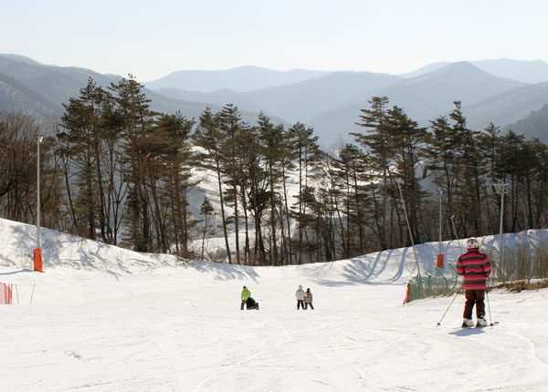 skiing at Alpensia