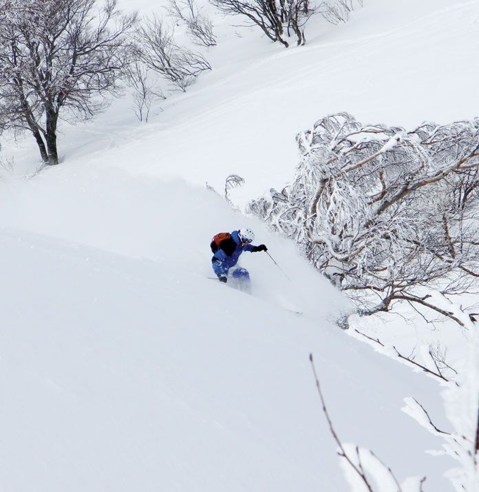 powder skiing Zao Onsen