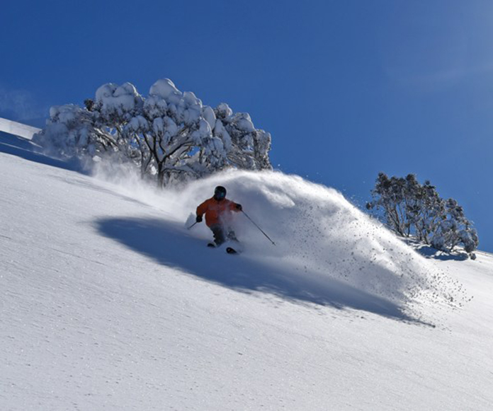 Clean powder lines at Hotham