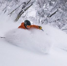 tree skiing Hotham