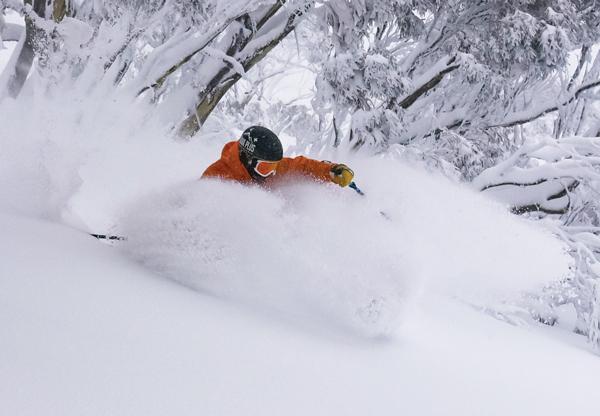 Powder skiing trees at Hotham