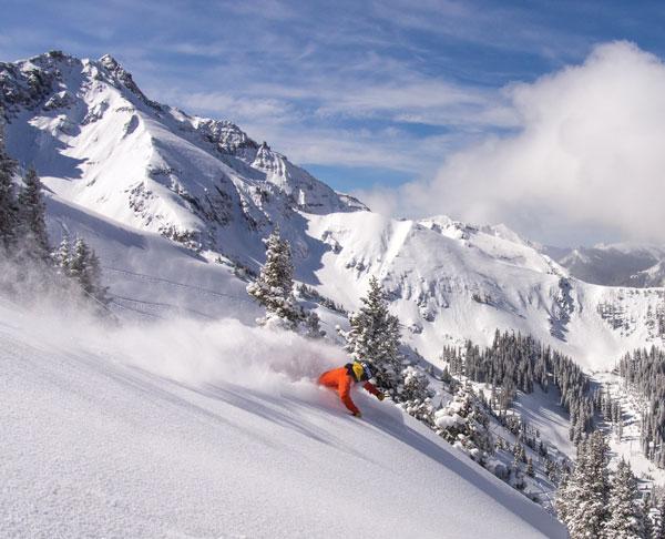 Skiing powder Telluride