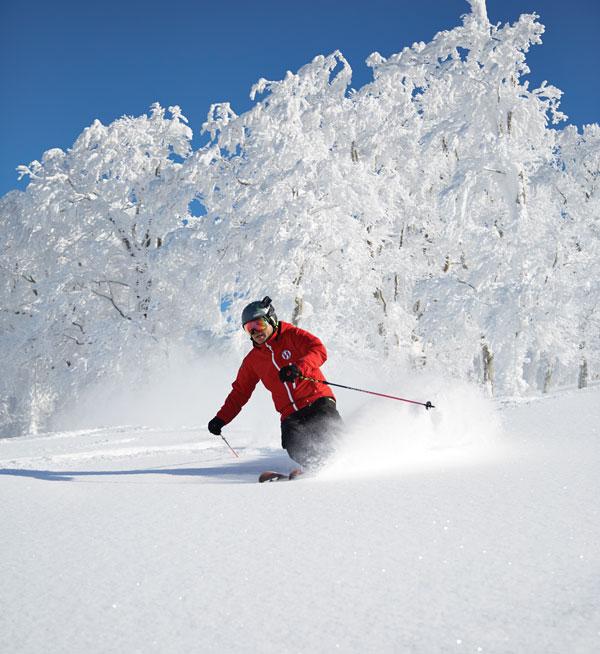 Powder skiing at Ani Ski Resort