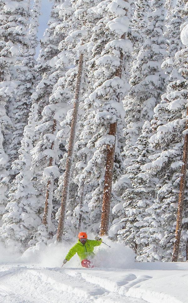 tree skiing Ajax at Aspen