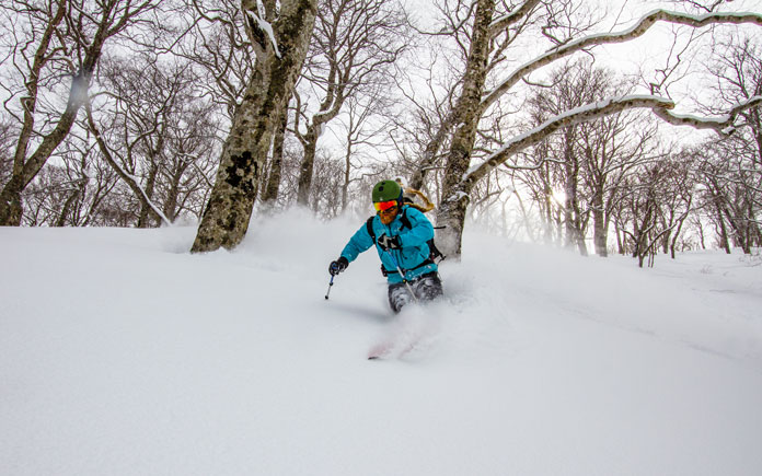 Powder skiing hte trees at Tenjindeira using a JR East Nagano Niigata Rail Pass