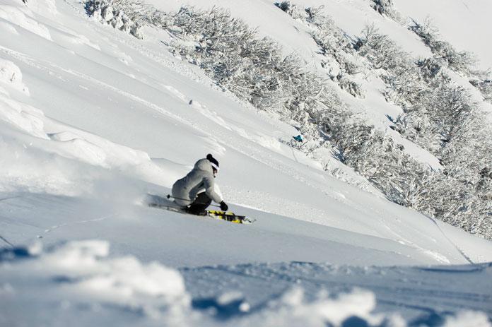 powder skiing at Buller