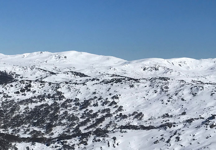 View from the back of Mt Perisher to the Paralsyer ridegeline and the Main Range beyond
