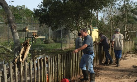 Alabama Gulf Coast Zoo sustains storm damage