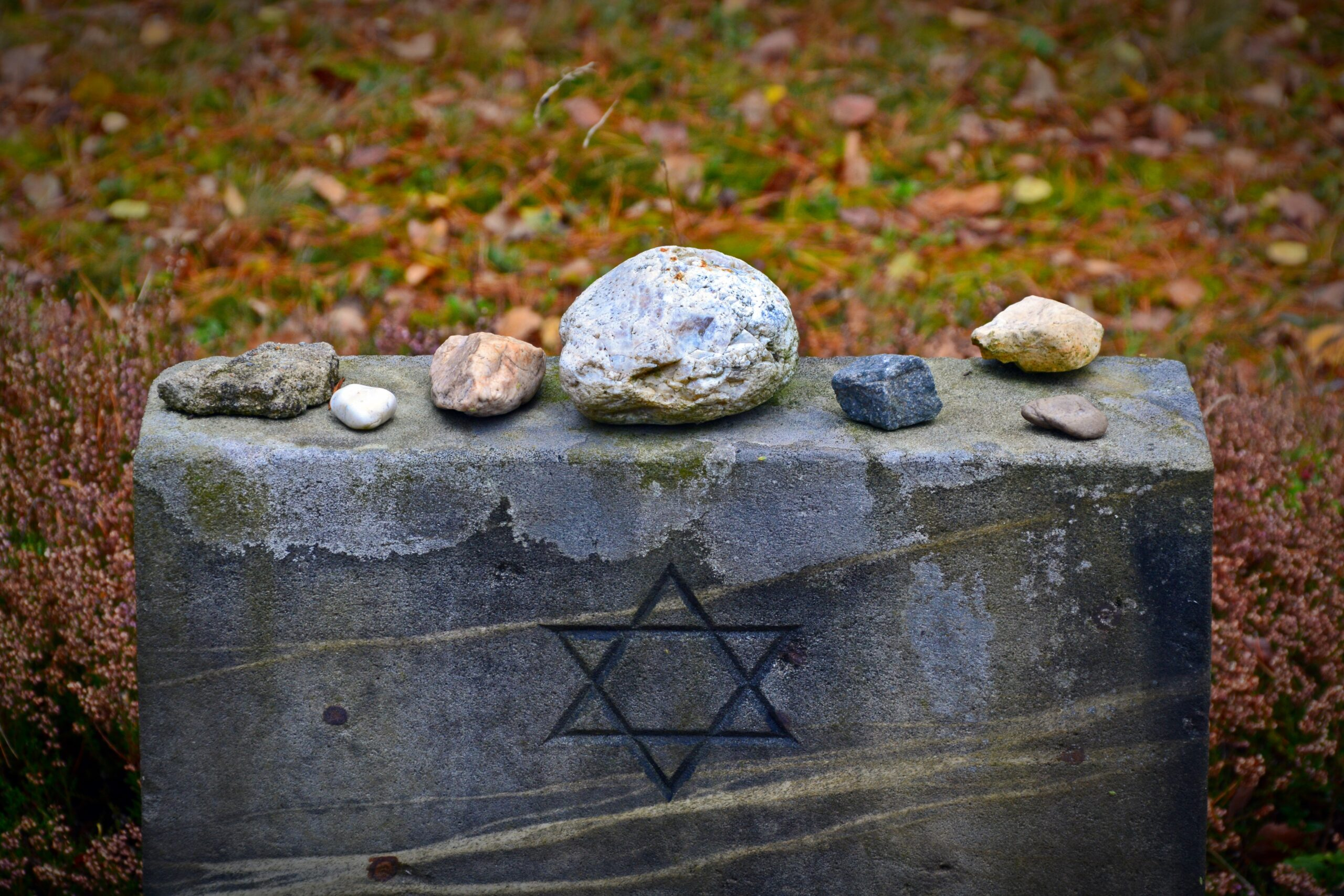 , In dedication of Holocaust Memorial Day, SnowCalmth