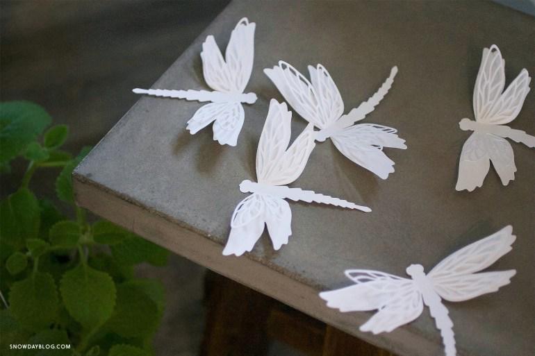Dragonfly White 1