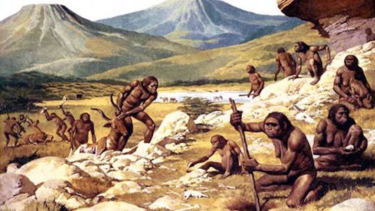 Australopithecus afarensis, whose most famous representative is Lucy, goes back more than 3 million years.